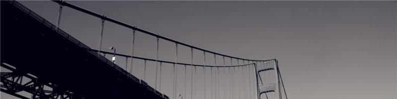 横看成岭侧成峰,远近高低金门桥